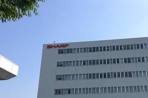 広島のシャープ